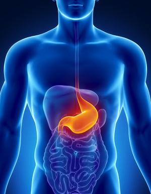 Czym i jak zakwasić żołądek? Zakwaszenie żołądka jako ważny element skutecznego leczenia wielu chorób i podstawa efektywnej profilaktyki! KOMPENDIUM