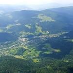 Szczawa