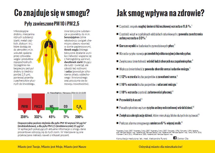 Jak smog wpływa na zdrowie? Skład smogu