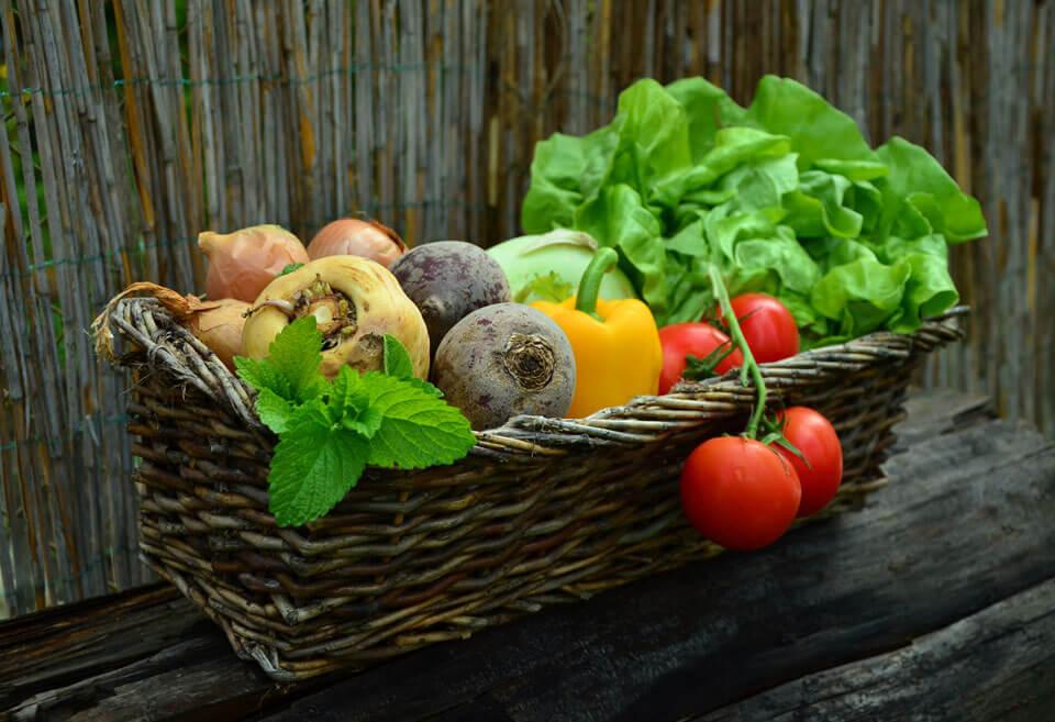 Warzywa i zioła