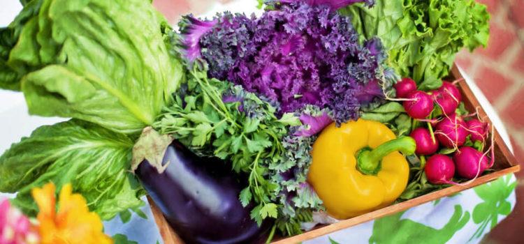 Dieta Antynowotworowa – co jeść, aby uchronić się przed rakiem?