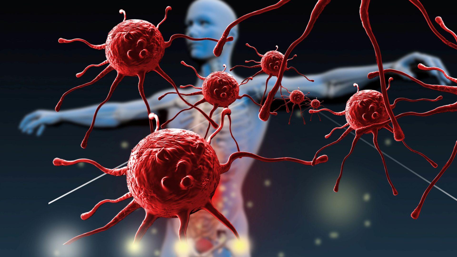 Odporność organizmu. Jak wzmocnić i stymulować? Pomocne zabiegi i proodpornościowy styl życia. Substancje i dieta na odporność KOMPENDIUM