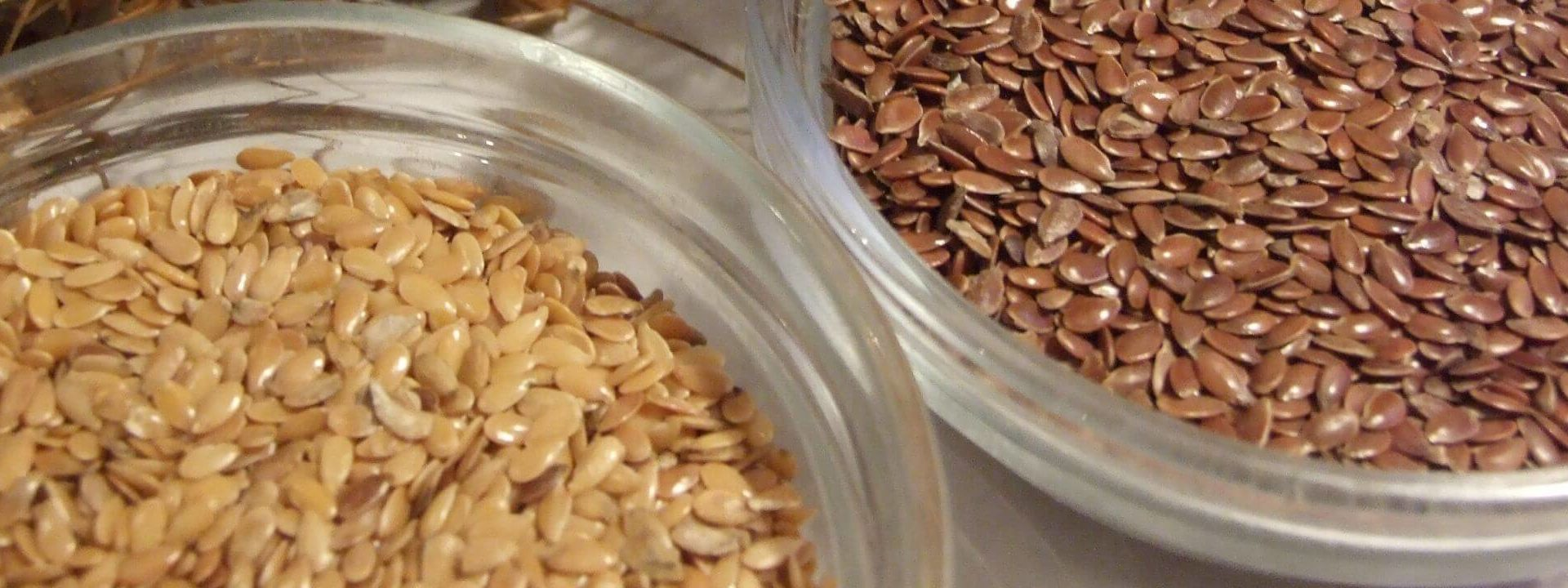 Siemię lniane. Nasiona lnu najbogatszym źródłem roślinnej omegi-3 (!)