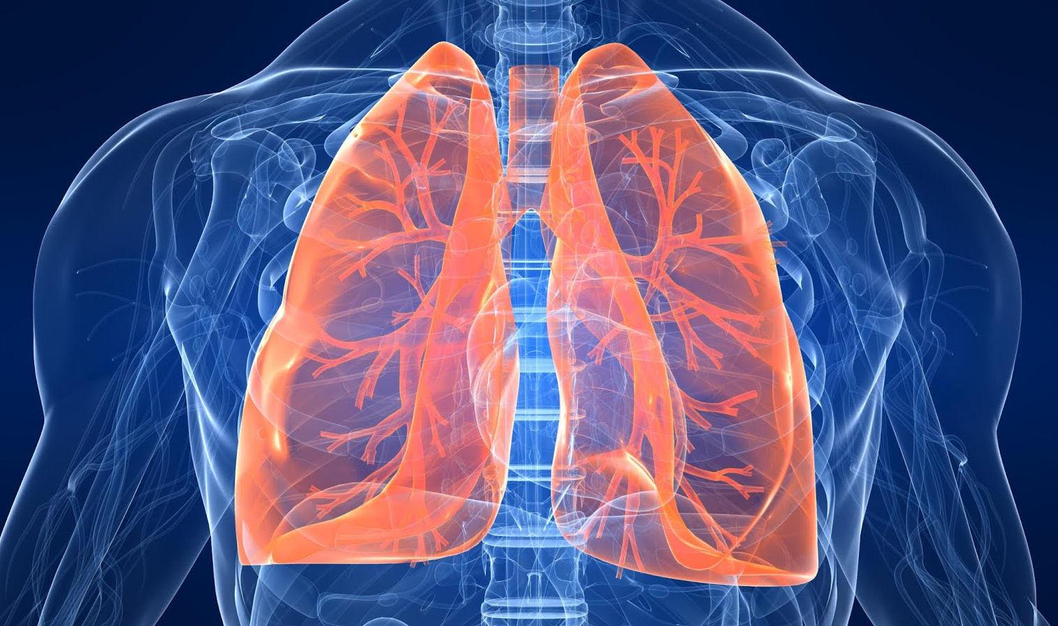 Regeneracja i oczyszczanie płuc oraz dróg oddechowych. Jak oczyścić płuca? Inhalacje, ćwiczenia, dieta i zioła na płuca KOMPENDIUM
