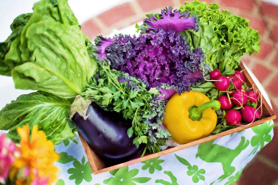 Dieta Antynowotworowa - co jeść, aby uchronić się przed rakiem?